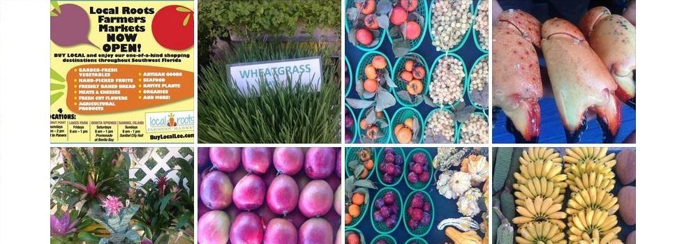 Sanibel Farmers Market