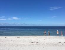 Captiva Beach Scene